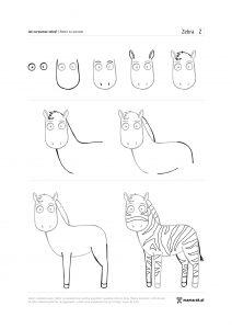 jak narysować zebrę