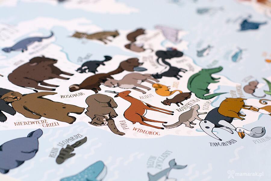 mapa zwierząt
